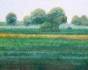 076 - Groene velden