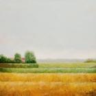 080 - Zandgorsdijk