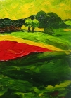 163 - Het rode veld aan de bosrand