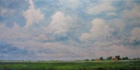 196 - Open polderlandschap